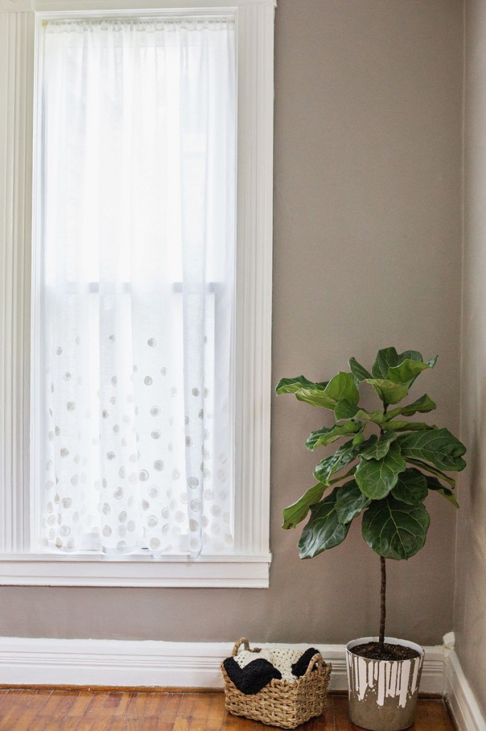 White Dot curtains
